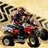 Join Seagate Quad Bike Safari!
